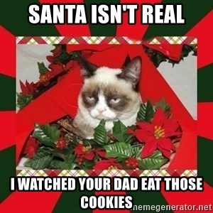 GRUMPY CAT ON CHRISTMAS - santa isn't real i watched your dad eat those cookies