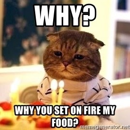 Birthday Cat - why? why you set on fire my food?