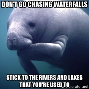 fat positive manatee - don't go chasing waterfalls stick to the rivers and lakes that you're used to