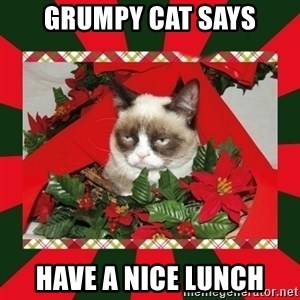 GRUMPY CAT ON CHRISTMAS - GRUMPY CAT SAYS HAVE A NICE LUNCH