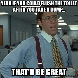 That'd be great guy - Yeah If you could flush the toilet after you take a dump... That'd be great