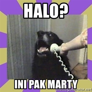 Yes, this is dog! - HAlo? ini pak marty