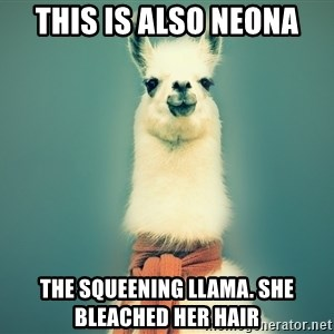 Pancakes llama - THis is also neona the squeening llama. she bleached her hair