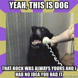 Yes, this is dog! - yeah, this is dog that rock was always yours and i had no idea you had it