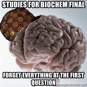 Scumbag Brain - studies for biochem final forget everything at the first question