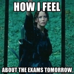 Katniss respect - How i feel  about the exams tomorrow