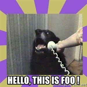Yes, this is dog! -  hello, this is FOO !