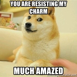 Dogeeeeeee - You are resisting my charm much amazed