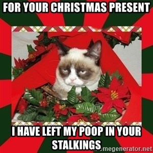 GRUMPY CAT ON CHRISTMAS - for your christmas present i have left my poop in your stalkings