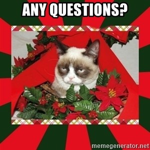 GRUMPY CAT ON CHRISTMAS - Any Questions?