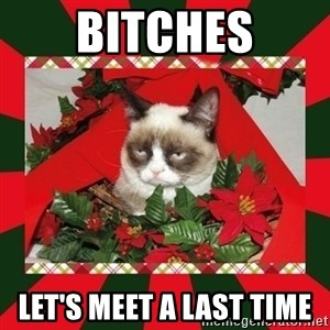 GRUMPY CAT ON CHRISTMAS - Bitches let's meet a last time