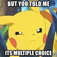 Unimpressed Pikachu - but you told me its multiple choice