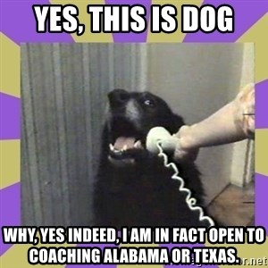 Yes, this is dog! - yes, this is dog why, yes indeed, i am in fact open to coaching alabama or texas.