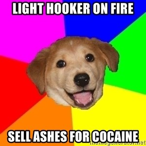 Advice Dog - light hooker on fire sell ashes for cocaine