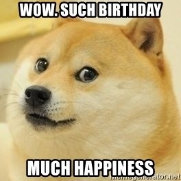 wow such doge1 - wow. such birthday much happiness