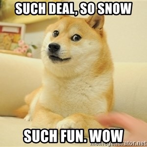 so doge - such deal, so snow such fun. WOW