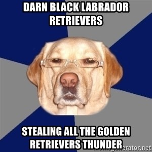 Racist Dog - Darn black labrador retrievers stealing all the golden RETRIEVERS thunder