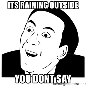 Really you dont say - Its raining outside You dont say