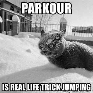 Sudden Clarity Cocaine Cat - PARKOUR IS REAL LIFE TRICK JUMPING