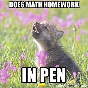 Baby Insanity Wolf - Does math homework in pen