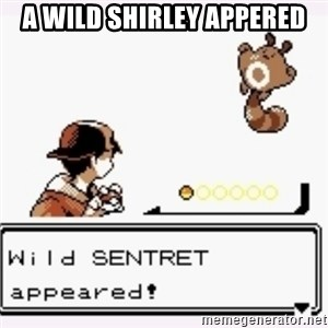 a wild pokemon appeared - a wild shirley appered