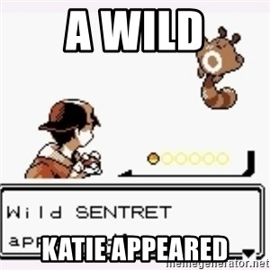 a wild pokemon appeared - A Wild Katie appeared
