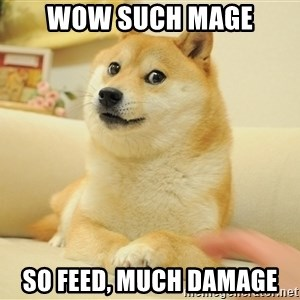 so doge - wow such mage so feed, much damage
