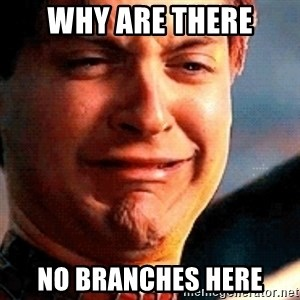 Crying Tobey Maguire - why are there no branches here