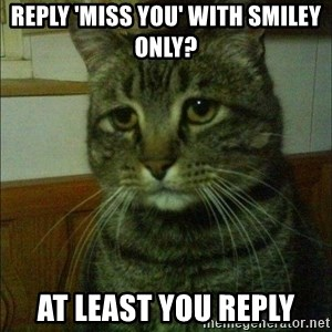 Depressed cat 2 - reply 'miss you' with smiley only? at least you reply