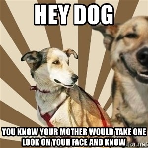 Stoner dogs concerned friend - hey dog you know your mother would take one look on your face and know