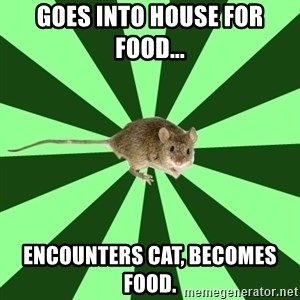 Mental Illness Mouse - goes into house for food... encounters cat, becomes food.