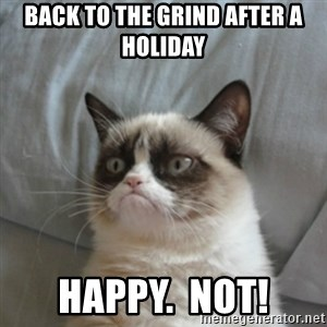 Grumpy Cat ={ - back to the grind after a holiday  happy.  NOT!