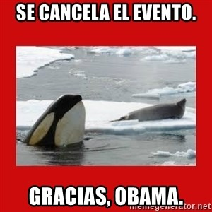 Thanks Obama! - Se cancela el evento. Gracias, Obama.