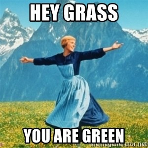 Sound Of Music Lady - hey grass you are green