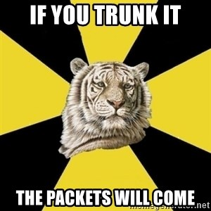 Wise Tiger - if you trunk it the packets will come