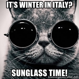 sunglasses cat - It's WInter in Italy? Sunglass Time!