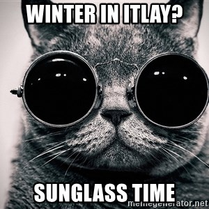 sunglasses cat - Winter in Itlay? Sunglass time