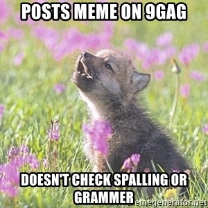 Baby Insanity Wolf - Posts meme on 9gag Doesn't check spalling or grammer