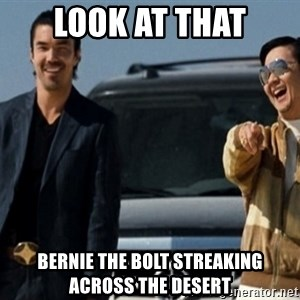 Mr Chow Funny eel - look at that bernie the bolt streaking across the desert