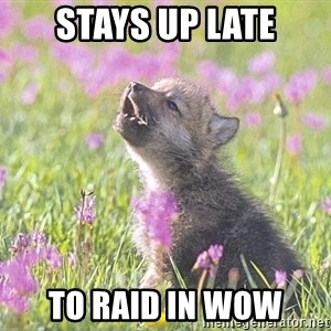 Baby Insanity Wolf - stays up late to raid in wow