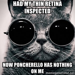 sunglasses cat - Had my thin retina inspected now poncherello has nothing on me