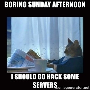 i should buy a boat cat - boring sunday afternoon I should go hack some servers
