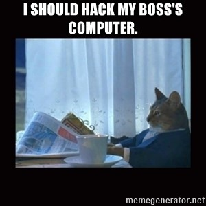 i should buy a boat cat - i should hack my boss's computer.