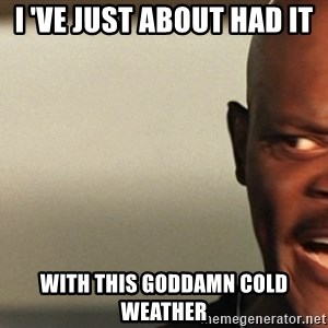 Snakes on a plane Samuel L Jackson - i 've just about had it  with this goddamn cold weather