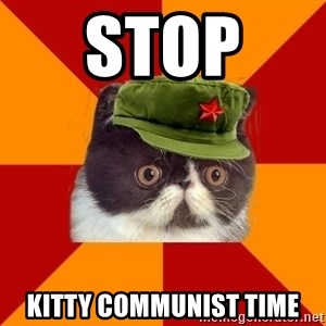 Communist Cat - STOP  KITTY COMMUNIST TIME