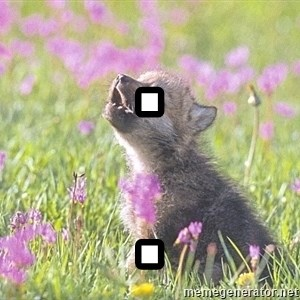 Baby Insanity Wolf - .  .