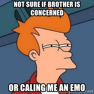 Not sure if troll - Not sure if Brother is concerned or caling me an emo