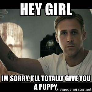 ryan gosling hey girl - Hey girl Im sorry. I'll totally give you a puppy.