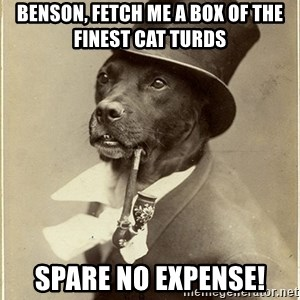 rich dog - Benson, fetch me a box of the finest cat turds spare no expense!