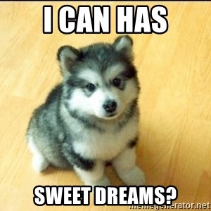 Baby Courage Wolf - i can has sweet dreams?